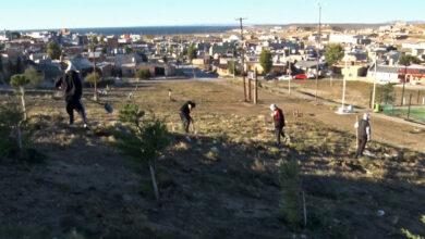 Photo of Caleta Olivia, El saneamiento ambiental de los barrios continúa de forma constante en la ciudad.